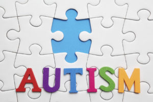 The Autism Puzzle Piece